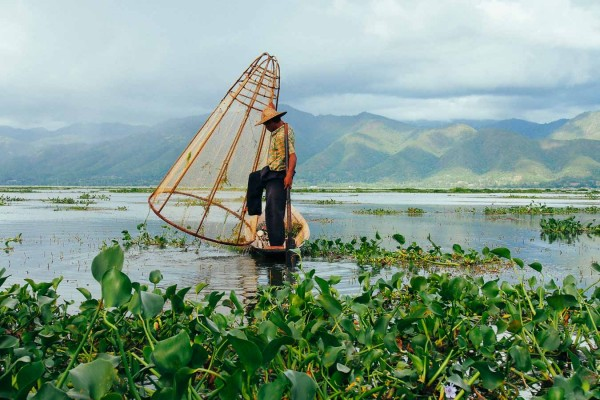 Inle Lake loocal fisherman
